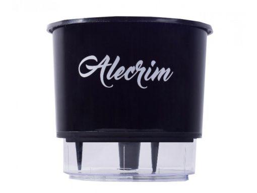 Vaso Autoirrigável Personalizado Alecrim